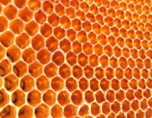 Honig gegen spröde Lippen