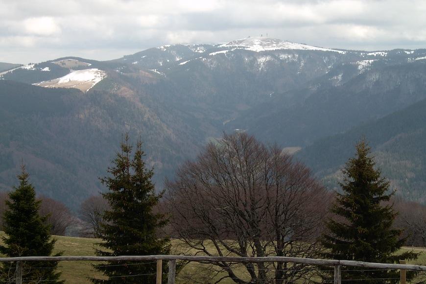 Schwarzwald Feldberg Urlaub in Deutschland