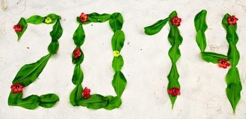 Gute Vorsätze 2014